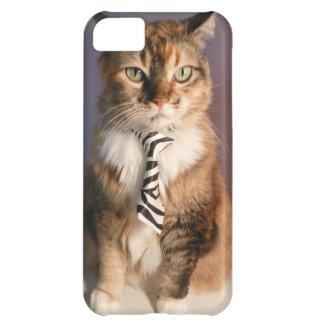 Chat domestique dans une cravate d'affaires coque iPhone 5C