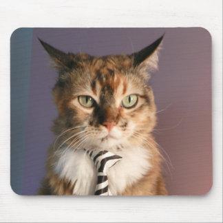 Chat domestique dans une cravate d'affaires tapis de souris