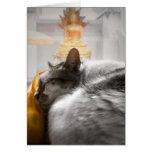 Chat dormant sous la montre de Bouddha Carte De Vœux
