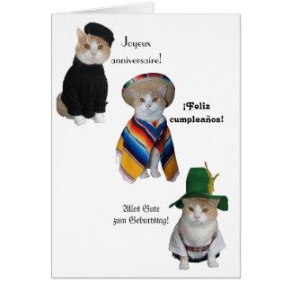 Chat drôle/anniversaire de Kitty joyeux dans six Cartes