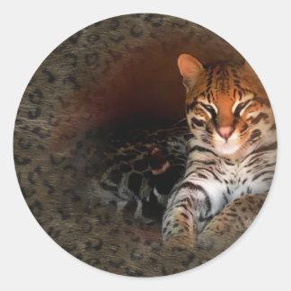 Chat du Bengale/autocollants de Kitty