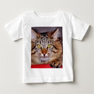 Chat du Maine-Coone T-shirt Pour Bébé