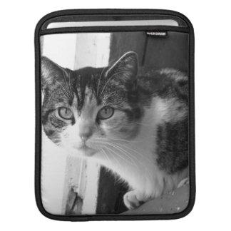 Chat en noir et blanc poches iPad