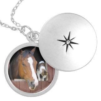 Chat et cheval - ranch de cheval - amants de médaillon avec fermoir
