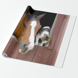 Chat et cheval - ranch de cheval - amants de papier cadeau
