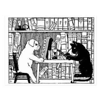 Chat et chien dans la bibliothèque carte postale