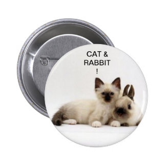 chat et lapin / cat and rabbit siamois ! badge !