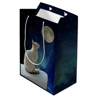 Chat et lune sac cadeau moyen