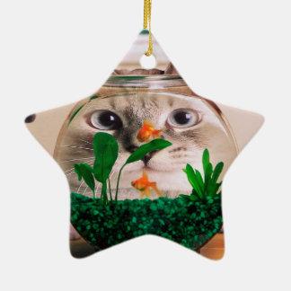 Chat et poissons - chat - chats drôles - chat fou ornement étoile en céramique