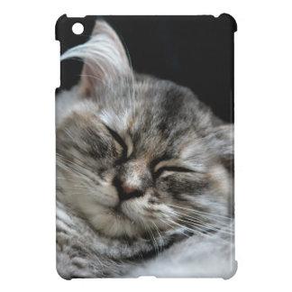 chat étuis iPad mini