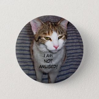 Chat excentrique drôle badges