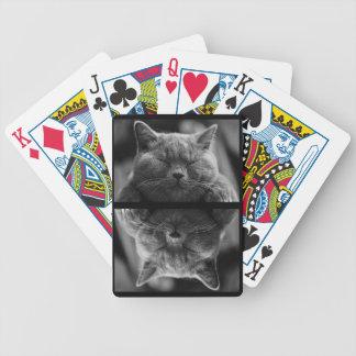 Chat gris de sommeil jeu de cartes