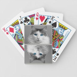 Chat gris et blanc pelucheux avec les yeux bleus jeu de cartes