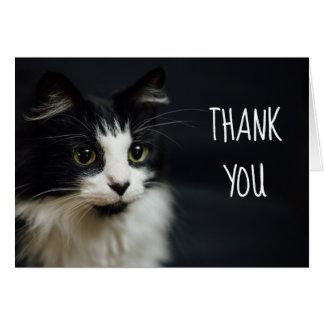 Chat, Kitty, petit carte pour notes de Merci
