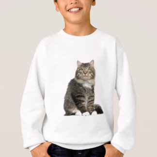 Chat Main coon Sweatshirt