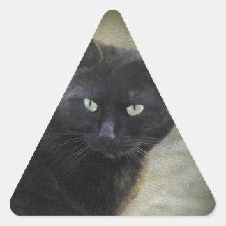Chat masculin noir avec les yeux verts sticker en triangle