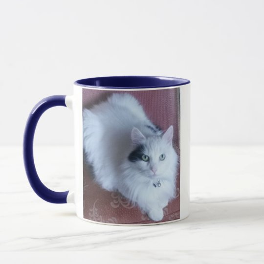 Chat mignon pelucheux blanc avec l'attitude mugs