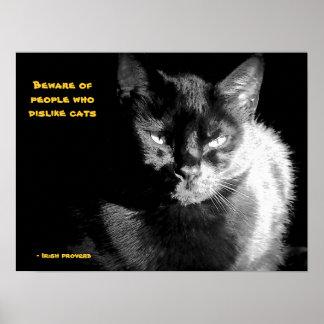 Chat noir brillant avec le proverbe affiche