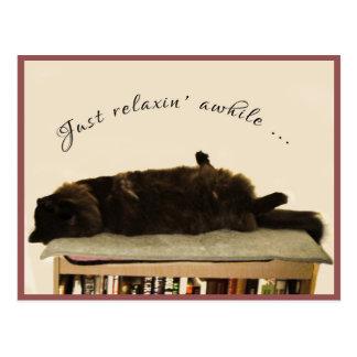 Chat noir des vacances carte postale