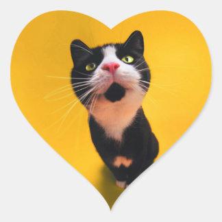 Chat noir et blanc de chaton-animal familier de sticker cœur