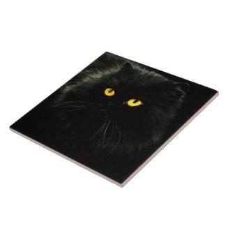 Chat noir grand carreau carré