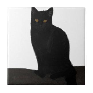 chat noir petit carreau carré