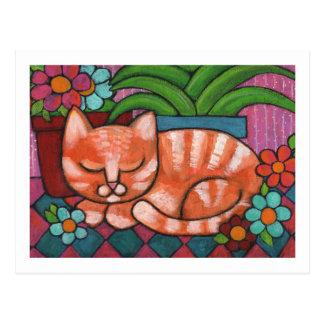 Chat orange cartes postales