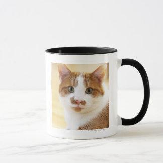 chat orange et blanc regardant l'appareil-photo mug