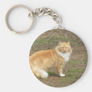 Chat orange et blanc velu porte-clés