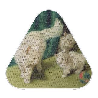 Chat persan blanc avec deux chatons