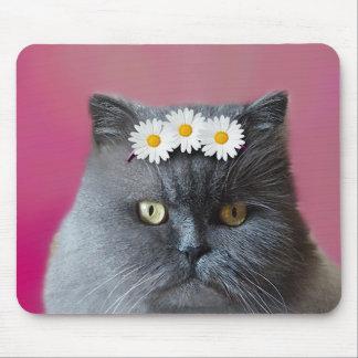 Chat persan gris avec les marguerites blanches tapis de souris