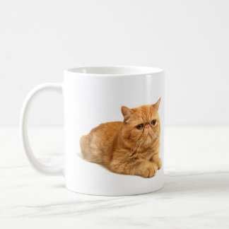Chat persan mug