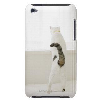 Chat regardant la fenêtre, vue arrière coques iPod Case-Mate