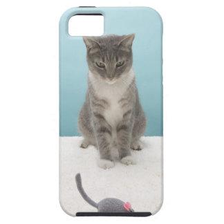 Chat regardant la souris de jouet sur la coques Case-Mate iPhone 5