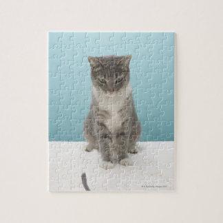 Chat regardant la souris de jouet sur la puzzle