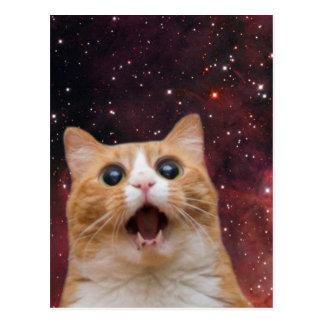 chat scaredy dans l'espace carte postale