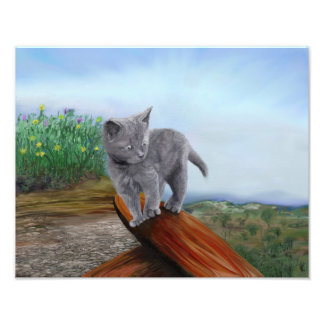 Chat scaredy mignon de chaton gris d'impression impression photo