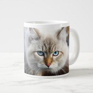 Chat sibérien dans une forêt d'automne mug