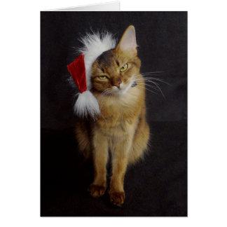 Chat somalien grognon dans Noël de casquette de Cartes