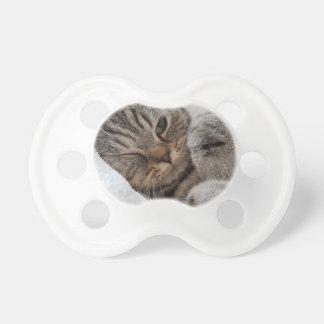 chat tétine