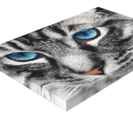 Chat tigré argenté d'A-PAL 12x8 avec des yeux bleu Toile Tendue Sur Châssis