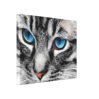Chat tigré argenté d'A-PAL 20x16 avec des yeux ble Impression Sur Toile