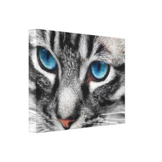 Chat tigré argenté d'A-PAL 24x18 avec des yeux ble Impression Sur Toile