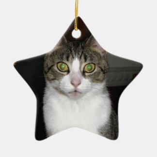 Chat tigré avec de grands yeux verts ornement étoile en céramique