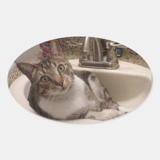 Chat tigré dans des autocollants d'évier