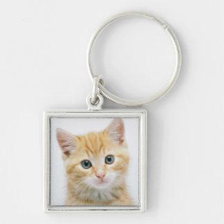 Chat tigré d'orange douce porte-clé carré argenté