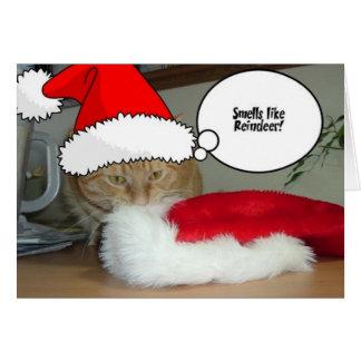 Chat tigré orange de Noël Carte De Vœux