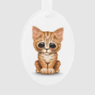 Chat tigré orange mignon triste de chaton sur le