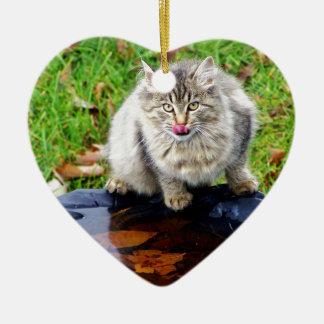 Chat tigré sauvage avec un regard piercing ornement cœur en céramique