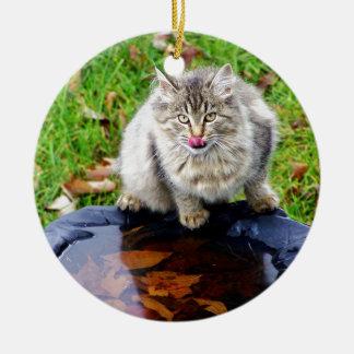 Chat tigré sauvage avec un regard piercing ornement rond en céramique